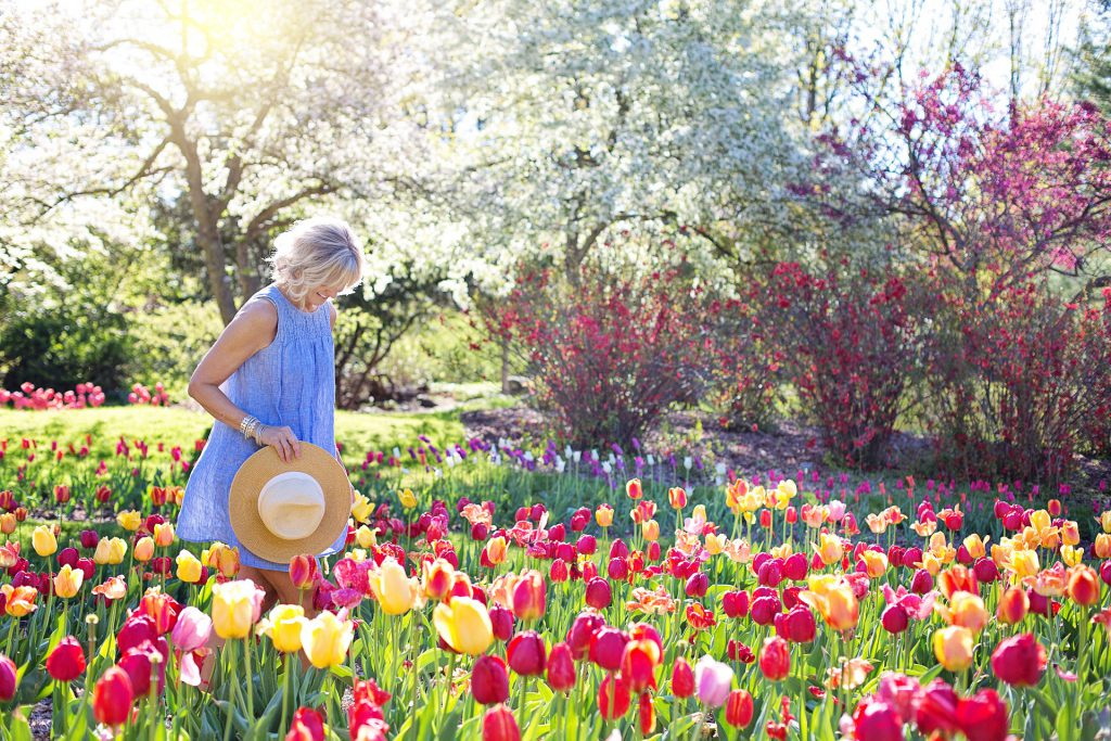 Der richtige Strauchschnitt lässt euren Garten strahlen.